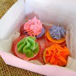 Mini Cupcake Pack